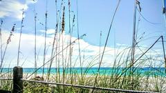 Lunch View at the Beach House (C. VanHook (vanhookc)) Tags: shadesofblue annamariaisland skymeetstheocean seascape seaoats