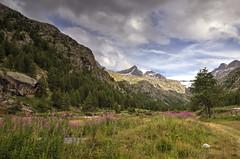 Parco Nazionale del Gran Paradiso (Ale*66*) Tags: granparadiso valledaosta landscape paesaggio mountains montagna vallata italy canon6d