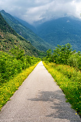 Sentiero Valtellina near Colico (Italy) (clodio61) Tags: colico europe lecco lombardy sondrio valtellina bicycle color country day flowerlily green landscape natural nature outdoor path pedestrian photography plant sentiero summer tree