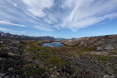 (alpros) Tags: greenland grnland summer hiking wandern vandra kujalleqmunicipality southerngreenland sdgrnland sydgrnland kujalleqkommun kujalleq grnland kalaallitnunaat lowarctictundra kalaallitnunaatlowarctictundra northamerica tunulliarfikfjord eiriksfjord