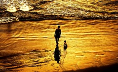 First time at the beach (Lior. L) Tags: firsttimeatthebeach golden silhouettes father son fatherson sea seascapes shadows light beach