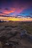 Dawn (Avisek Choudhury) Tags: canon5dmarkiii canon1635mmf28lii avisekchoudhury avisekchoudhuryphotography acratechballhead gitzo roanmountain grassyridgebald sunrise leefilters landscape
