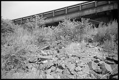 Secaucus NJ (Roberto Novicini) Tags: secaucus nj newjersey black ilford contax contaxt3 overpass rubble northjersey rangefinder hp5 ilfordhp5 hc110 monochrome 35mm film rocks bw meadowlands