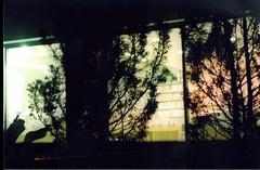 (HombreSalvaje) Tags: asahipentaxspotmatic 35mm filmisnotdead doubleexposure nature