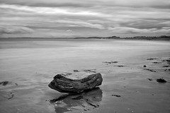 On the Beach . (wayman2011) Tags: bw beach seascapes northumberland alnmouth