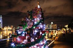 AT DSC_9399 (Andrew JK Tan) Tags: christmas charity lights nikon singapore nikkor d3 2012 marinabay 24120mm charitrees