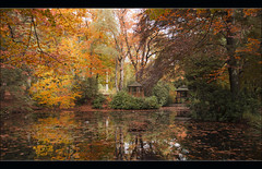 Autumn in Maharishi's Garden (Bert Kaufmann) Tags: autumn holland reflection fall netherlands garden pond ngc herbst nederland autumncolours autumncolors nl tuin paysbas autumnal herfstkleuren niederlande herst vijver reflectie maharishi kloostertuin herfsttuin vlodropstation