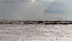 Tormenta en Velez-Malaga (Carlos Castro Fotógrafo) Tags: jose carlos castro tormenta malaga roja rayos truenos alerta lluvias inundaciones velezmalaga meteoaxarquia axarmedios