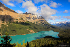 Peyto Lake from Bow Summit Lookout, Banff National Park, Alberta, Canada (Black Diamond Images) Tags: mountain lake canada mountains rockies lakes scenic aquamarine lookout potd alberta rockymountains bowriver banffnationalpark peytolake icefieldsparkway canadianrockies glaciallake bowsummit timberlinetrail mistayariver watersheddivide scenictours scenictourscanada treasuresoftherockies