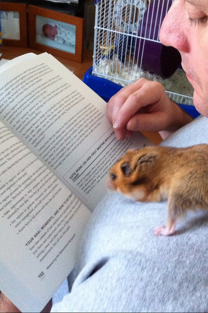 Joe Waters and His Guinea Pig Reads The book