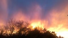 Skyfire (BrightAndBeautifulWorld) Tags: trees sunset clouds fire treeonfire treesonfire cloudsonfire fireysunset
