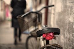 every day a new road to discover (~mimo~) Tags: china woman blur color bike bicycle photography alley dof shanghai bokeh seat mimokhair lovingphotographyevenmoretoday
