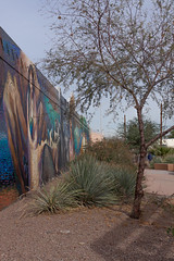 Barrio Anita Mural Project (bo mackison) Tags: arizona southwest art mural tucson publicart barrios tucsonarizona ussouthwest barrioanita christmasinthebarrio barrioanitamuralproject