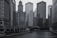 CHICAGO (Silent G Photography) Tags: city longexposure chicago storm monochrome rain river illinois nikon downtown wideangle le nikkor 2012 d800 1636 markgvazdinskas silentgphotography silentgphoto