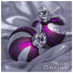 Christmas baubles (Angela Freeman) Tags: christmas glitter purple baubles christmascard tamron90mm pentaxk5