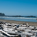 DSC_2052 Wickaninish Beach - Pacific Rim