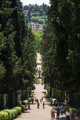 _DSC3812 (Dario Morelli) Tags: boboli pitti giardini palazzo firenze maggio 2016