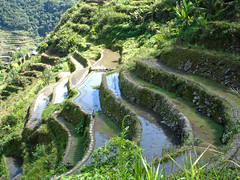Batad (lukedrich_photography) Tags: sony dscw55 sonydscw55 hdr philipines   pilipinas     republikangpilipinas republicofthephilippines asia southeast southeastasia pacific island banaue banawe batad ifugao unesco worldheritagesite history culture hill mountain agriculture rice terrace