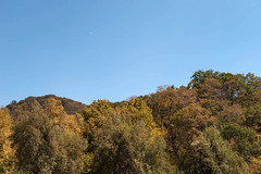 Oak Glen. (LisaDiazPhotos) Tags: lisadiazphotos apple orchard pickin picking autumn foliage oak glen california