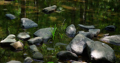 Stone, Water and Light (vbd) Tags: pentax k3 vbd smcpentaxda55300mmf458ed ct connecticut rock stone newengland water park reflection chatfieldhollowstatepark 2016 summer2016 handheld manualfocus brook creek stonewaterlight