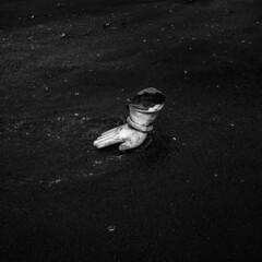 (ayashok photography) Tags: ayp1418 ayashok ayashokphotography nikon nikond810 ganesh ganeshachaturthi ganeshvisarjan vinayagar hand god elephant destroy marina marinabeach foreshoreestate tamilnadu chennaiweekendclickers cwc chennai chennaitamilnadu india 2016