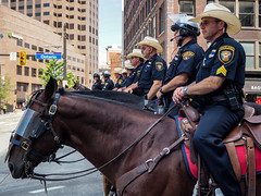band_of_brothers (gerhil) Tags: people police event rnc street animal horse brotherhood outdoor summer july2016 riding 1001nights 1001nightsmagiccity
