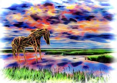 Wiry Wild Horse (Rusty Russ) Tags: photoshop flickr google bing daum yahoo image stumbleupon facebook getty national geographic magazine creative creativity montage composite manipulation color hue saturation flickrhivemind pinterest reddit flickriver t pixelpeeper blog blogs openuniversity flic twitter alpilo commons wiki wikimedia worldskills oceannetworks ilri comflight newsroom fiveprime photoscape winners all people young photographers paysage artistic photo pin stockpainterly paint brush painttexture tumblr android colourful red blue green white air eye art landscape instagram digital light new high exposure style