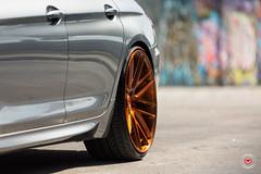 BMW 650i Gran Coupe - Vossen Forged Precision Series VPS-308 Wheels -  Vossen Wheels 2016 - 1022 (VossenWheels) Tags: 650i aftermarket ambertone bmw bmw6seriesforgedwheels bmw6seriesgrancoupe bmw6serieswheels bmw650i bmw650iforgedwheels bmw650iwheels bmwforgedaftermarketwheels bmwforgedwheels bmwgrancoupe bmwgrancoupewheels bmwm6 bmwm6aftermarketforgedwheels bmwm6aftermarketwheels bmwm6forgedwheels bmwm6wheels engineeredart forged forgedwheels graffiti grancoupe loweredbmw650i loweredbmwgrancoupe loweredbmwm6 m6 madeinmiami miami precision precisionseries vps vps308 vossen vossenbmw6series vossenbmwgrancoupe vossenbmwm6 vossenforged vossenforgedbmw6series vossenprecisionseries vossenvps vossenvps308 wynwood lowered