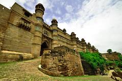 Gwalior Fort (PiccolaSayuri) Tags: gwalior fort india rajasthan haryana uttarpradesh madhyapradesh delhi mandawa bikaner jaisalmer jodhpur udaipur jaipur agra fathpursikri orchha khajuraho varanasi incredibleindia hindu temples forts colours people faces