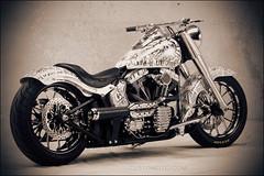 bikes-2009world-102-a-l