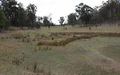 Rocky Creek Road, Bonshaw NSW