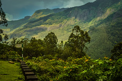Paradise! (yugantarora) Tags: sky landscape beauty mountains water summer beautiful nikon photo india moment green traveler kerala heaven photography scenery paradise capture munnar pleasant d3200 westernghats southindia incredibleindia indiainmylens travelcaptures flickr flickrlandscape love indiaimages indiapictures indiaheritage indiatrip lovekerala keralatrip keralapeace keraladiaries