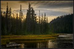 Dusk at Reflection Lake (Ernie Misner) Tags: reflectionlakes mountrainier mountrainiernationalpark lake washington erniemisner nikon d800 lightroom nik capturenx2 cnx2 justplayingaround f8andbethere