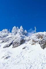 Harry_30828,,,,,,,,,,,,,,,,,,,,,,,Hehuan Mountain,Taroko National Park,Snow,Winter (HarryTaiwan) Tags:                       hehuanmountain tarokonationalpark snow winter mountain     harryhuang   taiwan nikon d800 hgf78354ms35hinetnet adobergb