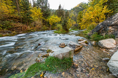 Spearfish Canyon Fall Colors (davidgevert) Tags: d800 nikond800 nikon1424mmf28 14mm ultrawide landscape landscapephotography autumncolors spearfishcanyon stream longexposure southdakota water fallcolors davidgevert gevertphotography