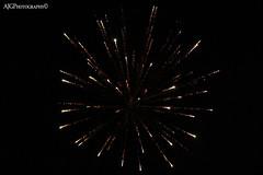 Fireworks @ Elstead RBL (AmyyJG) Tags: sky night fire colours fireworks explosion guyfawkes surrey bonfire colourful explosions bonfirenight elstead rbl royalbritishlegion elsteadroyalbritishlegion