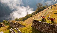 Machu Picchu-84