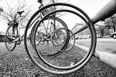 Circles. (Birdhouse camper) Tags: blackandwhite bw white black bike canon copenhagen blackwhite circles 7d blabkwhite