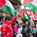 Gaza demo - Sheffield, UK 17 November 2012