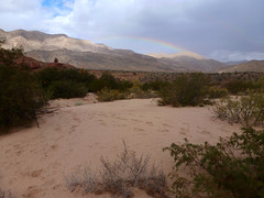 rainbow in the desert (QsySue) Tags: arizona mountains digital lumix rainbow rocks hiking hike panasonic dirt pointandshoot digitalcamera virginriver virginrivergorge digitalpointandshoot cedarpocket panasoniclumixdmczs8