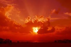Elliots Sunrise Chennai