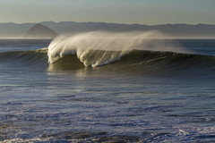 Cayucos wave
