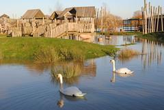 Stanwick Lakes flooding (Pegpilot) Tags: park november river flooding country lakes floods nene 2012 stanwick