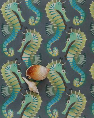 Seahorses on parade on grey-blue