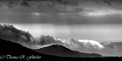 Cloudy Morning along the Highland Scenic Highway (travelphotographer2003) Tags: autumn bw usa fall weather clouds blackwhite panoramic westvirginia relaxation sunrays exploration idyllic appalachia freshness appalachianmountains purity tranquilscene alleghenymountains beautyinnature route150 pocahontascounty nationalscenicbyway highlandscenichighway