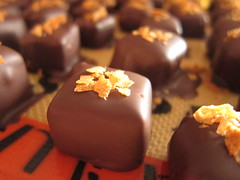 Coffee Crunch Chocolates (gnuf) Tags: feuilletine