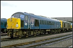 44007 Toton 12Mar77 (david.hayes77) Tags: peak midland sulzer toton class44 44007 erewashvalley