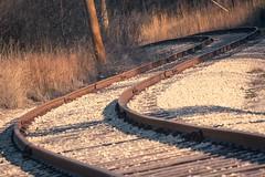 Nooo....It's COMPLETELY Safe (Kevin Rodde Photography) Tags: railroad train canon tracks rails elgin curve scurve 500d blackhawkpark t1i kevinrodde kevinroddephoto kevinroddephotography