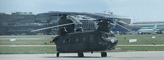 U.S. Army Chinook CH-47D (gallftree008) Tags: dublin history airport aircraft aeroplane historic helicopters aeroplanes dap dublinairport
