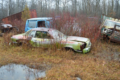 DSC_0815 v2 (collations) Tags: ontario abandoned autos derelict automobiles rockwood junkyards wreckers autowreckers autograveyards mcleansautowreckers carcemeteries